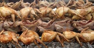 Quail strung on a skewer and grilled in barbecue Stock Images