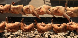 Quail strung on a skewer and grilled in barbecue Royalty Free Stock Photography