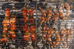 Quail Thighs and Beef Skewers on the Grill Royalty Free Stock Photos
