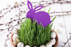 Quails egg on grass Stock Images