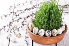 Quails egg on grass. In a brown flowerpot.Holiday Easter Royalty Free Stock Photos