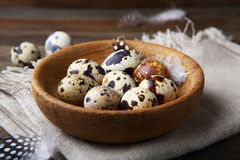 Quails eggs in bowl Royalty Free Stock Photo