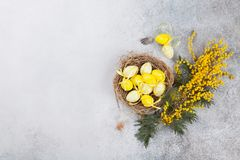 Free Quails Eggs In Nest And Yellow Flowers. Easter Greeting Card Royalty Free Stock Images - 111334929