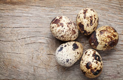 Quails eggs Stock Photo