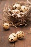 有本纱世鹌鹑蛋是哪部
