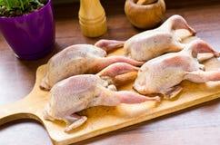 Quails prepared to baking. Fresh quails prepared to baking Royalty Free Stock Photo