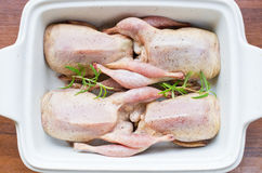 Quails prepared to baking. Fresh quails prepared to baking Royalty Free Stock Image