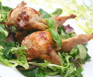 Quails Royalty Free Stock Images