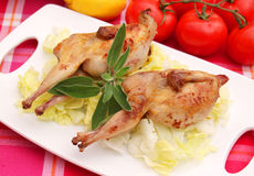 Quails Stock Images
