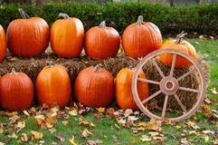 Quaint country setup of harvest pumpkins and a wagon wheel royalty free stock photos