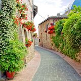 Quaint flower-lined street Stock Photo