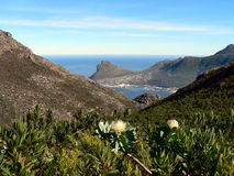 Quaint Harbour. Hout Bay, a harbour on the Cape Peninsula, near Cape Town, South Africa Royalty Free Stock Photography