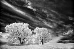 Quaint Lutheran church on the Idaho Prairie Royalty Free Stock Images