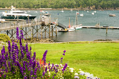 Quaint New England harbor. A view of a pier or wharf at a quaint little New England harbor.  Bar Harbor, Maine Stock Photography