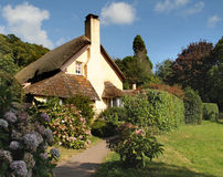 Quaint Thatched English Cottage. Traditional 'Chocolate Box' Thatched Cottage and garden in an English Rural Village Royalty Free Stock Photography