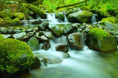 Quaint water Stock Image