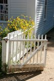 Quaint white fence at colonial house. White picket fence beckons with yellow flowers at colonial Massachusetts home royalty free stock image