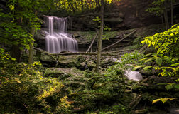Quakertown Falls Royalty Free Stock Photos