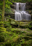 Quakertown Falls Stock Image