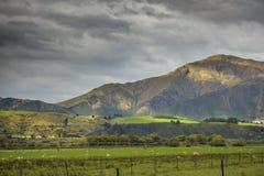 In qualche luogo in Nuova Zelanda Immagini Stock Libere da Diritti