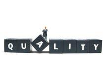 Qualidade Imagem de Stock