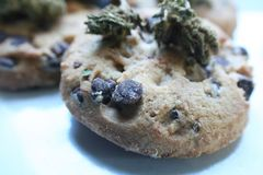 Qualidade de Chip Cookie Marijuana Edibles High do chocolate fotos de stock