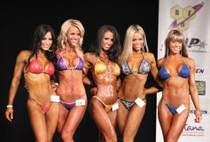 Qualifiés aux finales de concours de bikini Images stock