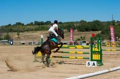 Qualificateur sautant Cheval Racing Photographie stock libre de droits