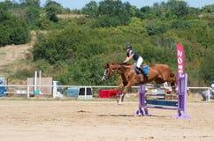 Qualificateur sautant Cheval Racing Images stock