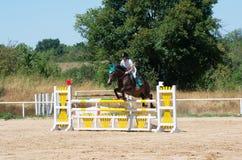 Qualificateur sautant Cheval Racing Photo libre de droits