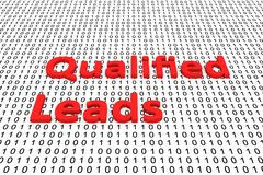 Qualified leads. In the form of binary code, 3D illustration Stock Photos