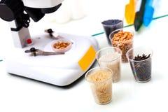 Qualità dei prodotti alimentari Fotografia Stock