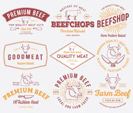 Qualitätsrindfleischfleisch gefärbt Stockfotos