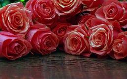 Qualité de studio de fumée de rose de rouge Photo stock