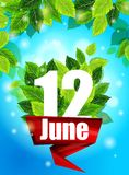 Quality background. Bright poster June 12 with the flowers. Realistic concept. Quality background with green leaves. Bright poster June 12 with the flowers and Stock Photos