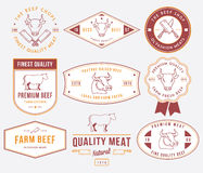 Quality beef meat 2 colored Stock Photography