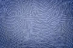 Quality Blue Snake Skin Texture With Vignette Spot Stock Photography