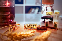 Quality control of wheat in the lab, aged photo Royalty Free Stock Images