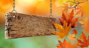 Dry autumn leaves falling from the air and wooden board. royalty free stock photography