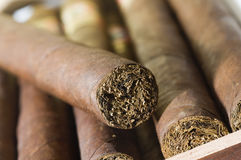 Quality hand made cigars from Nicaragua Stock Photo