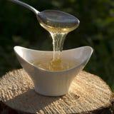 Quality honey Stock Photos