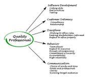 Quality Professional. Important characteristics of Quality Professional Stock Images