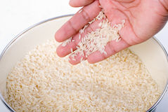Quality rice Royalty Free Stock Images