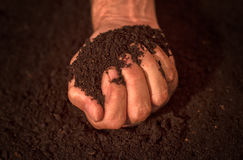 Quality soil in male gardener hands. Cultivated dirt ground for organic gardening and agriculture Royalty Free Stock Photo