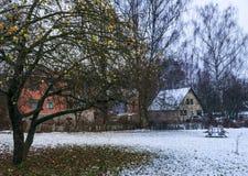 Quando l'autunno si trasforma nell'inverno Fotografie Stock