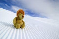 Quando o Leão foi esquiar Imagens de Stock Royalty Free