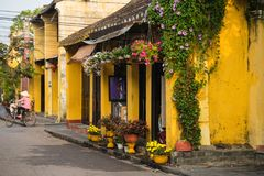 Free Quang Nam, Vietnam - Apr 2, 2016: Old Aged House With Yellow Wall And Flower Pots Against Cycling Woman On Background. Hoi An Is U Royalty Free Stock Images - 111465979