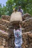 Quantidades grandes de cigarros secos que carregam em um caminhão levando fora de Dhaka, manikganj, Bangladesh Fotografia de Stock
