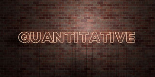 QUANTITATIVE - fluorescent Neon tube Sign on brickwork - Front view - 3D rendered royalty free stock picture Royalty Free Stock Photography