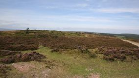 Quantock Hills Somerset England and trig point Royalty Free Stock Photography